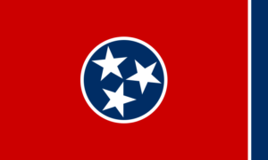 stem cells Tennessee
